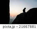 Monkey sitting silhouette at dawn 21667881