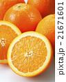 ネーブルオレンジ 21671601