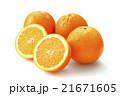 ネーブルオレンジ 21671605