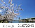 春の大川 21672243