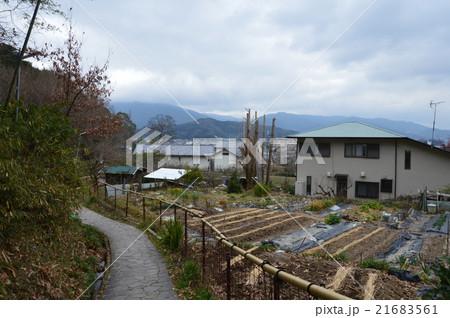 山の辺の道(奈良県桜井市)の写真素材 [21683561] - PIXTA