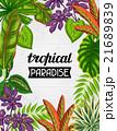 トロピカル 熱帯 植物のイラスト 21689839