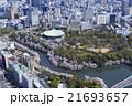 北の丸公園の桜/空撮 21693657