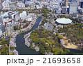 北の丸公園の桜/空撮 21693658