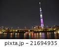 墨田公園 夜桜 ライトアップの写真 21694935