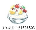 かき氷 白くま 氷菓のイラスト 21698303