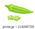 おくら 21698756