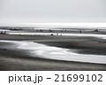 真玉海岸 潮干狩り 21699102