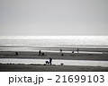 真玉海岸 潮干狩り 21699103