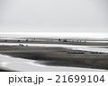真玉海岸 潮干狩り 21699104