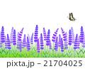 ラベンダー畑と蝶 21704025