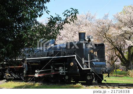 春の蒸気機関車 21716338