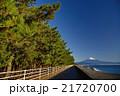 静岡県三保の松原と富士山 21720700