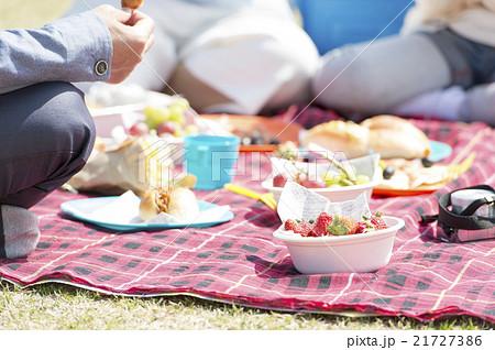 家族でピクニック 21727386