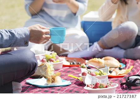 家族でピクニック 21727387