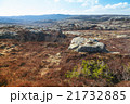 Norwegian landscape with rocks and red moss 21732885