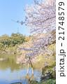 春の成田山の風景 21748579