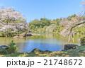 春の成田山の風景 21748672