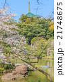 春の成田山の風景 21748675