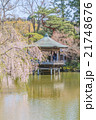 春の成田山の風景 21748676