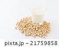 大豆と豆乳 白バック 21759858