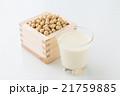 大豆と豆乳 白バック 21759885