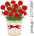 カーネーション 鉢植え 母の日のイラスト 21771697