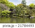 京都府 渉成園 風景の写真 21784493