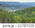 森の風景2 21787326