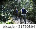 森林を歩く男性たち 21790304