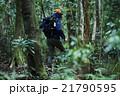 森林を歩く男性たち 21790595
