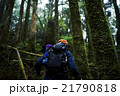 森林を歩く男性たち 21790818
