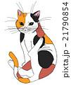 三毛猫 21790854