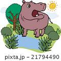 動物 カバ 野生動物のイラスト 21794490