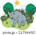野生動物 サイ 21794492