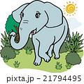 ゾウ 動物 野生動物のイラスト 21794495