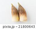 たけのこ 白バック 21800643