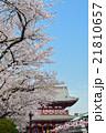 浅草の浅草寺宝蔵門と満開の桜 21810657