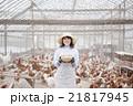 養鶏 女性 21817945