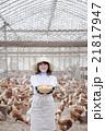 養鶏 女性 21817947