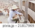 養鶏 女性 21817969