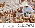 養鶏 女性 21817978
