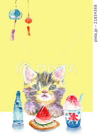 イラスト 猫 暑中見舞い 21834368