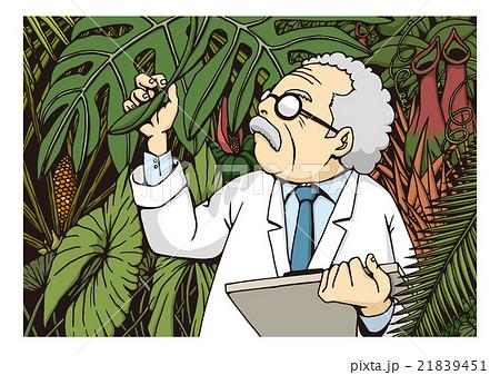 植物学のイメージイラスト 21839451