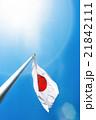 日の丸, 国旗 21842111