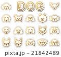 犬 / アイコン 21842489