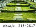 苔 石畳 日本庭園の写真 21842817