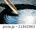 つくばい 手水鉢 日本庭園の写真 21842963