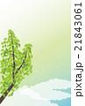 背景素材-夏イメージ,銀杏(タテ1) 21843061