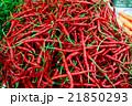 インドネシアの赤唐辛子 21850293
